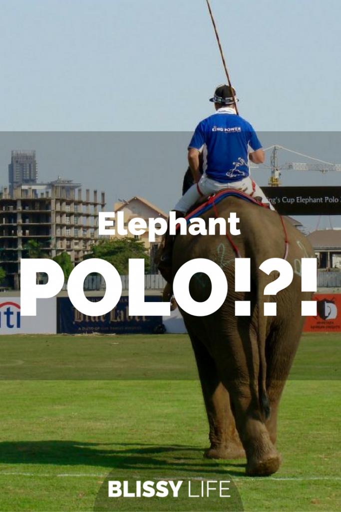 elephant-polo